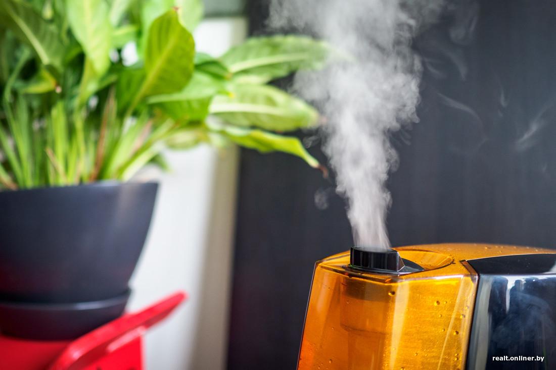 Ионизатор или очиститель воздуха что лучше