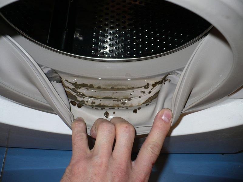 Очистка стиральной машины от плесени