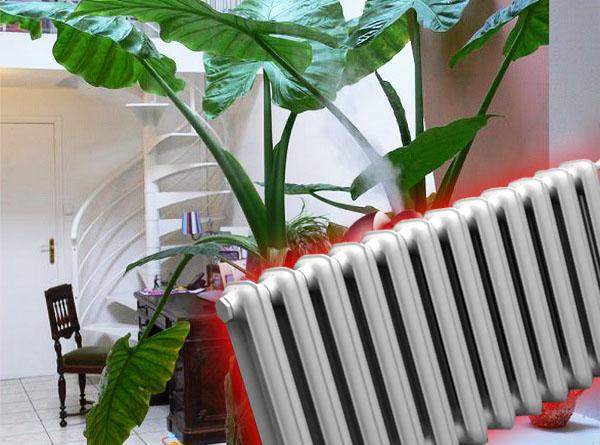 Что дает увлажнитель воздуха в квартире